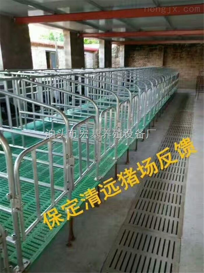 长期出售养猪设备带底定位栏复合板限位栏保胎母猪