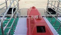 养猪设备母猪产床使用的注意事项