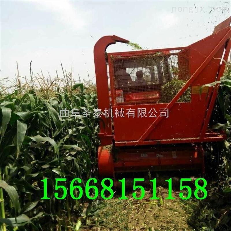 玉米秸秆青贮收获机 粉碎秸秆回收机厂家