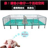 猪哈哈仔猪保育床 复合板育仔床 双体仔猪保育床