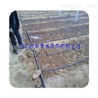 湖南膜下滴灌系统铺设方法技巧 沅陵县滴灌带专业安装指导