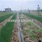 齐全可定制安徽微喷带细密灌溉效果好 无为县大田微喷项目工程施工