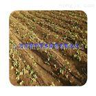 齐全四川滴灌厂家大力度促销 绵阳市滴灌管耐腐蚀材料