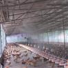 養殖場噴霧降溫設備 高壓霧化降溫裝置