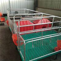 母猪产床设备复分娩床热镀产保一体床