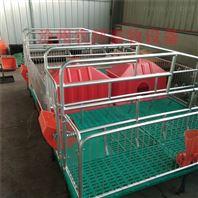 母猪产床热镀锌产保一体床复合双体床
