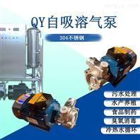酸洗溶气泵水体循环过滤泵臭氧消毒泵耐酸碱