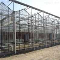 建达JD玻璃大棚 智能玻璃温室
