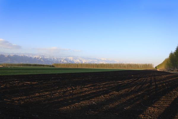 粮油通用机械产品型号编制规定、、农机技术-