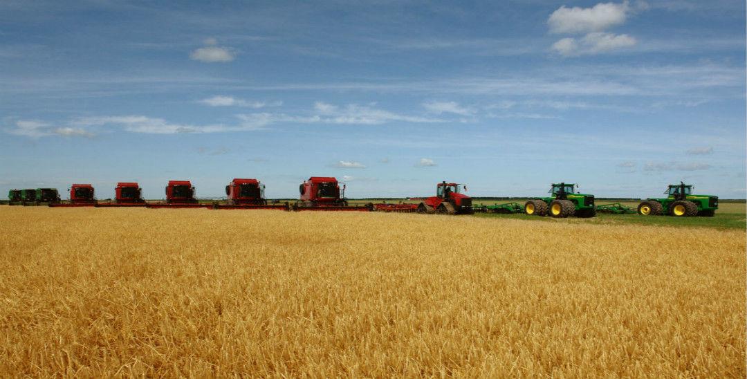 《全国农业现代化规划》正式发布 明确发展方向