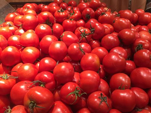 疫情期間春季蔬菜機械化生產指導意見