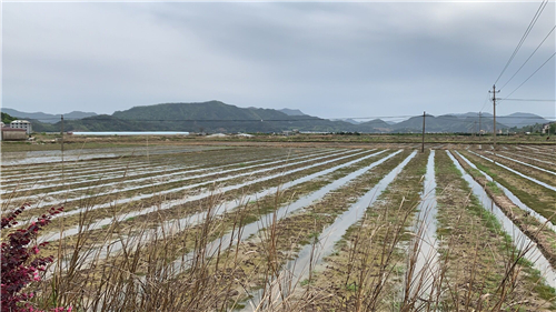 山東省乳山市的農戶注意了,農機補貼申請指南來了!
