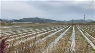 种地逐渐被机器代替,农民去干啥?