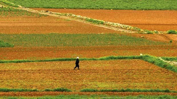 关于开展农业普查征文和摄影作品有奖征集活动的通知