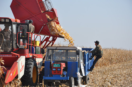 """杭州:为""""春运""""农机安全生产保驾护航"""