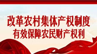 农村集体产权制度改革正式全面启动