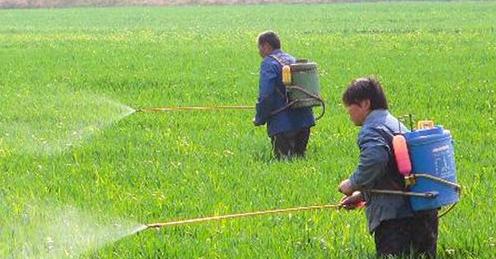 我国农药市场现状与前景分析_农药,市场_中国