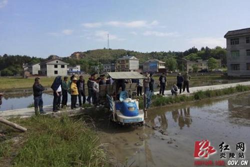 人口老龄化_炎陵县人口